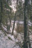 ländliche Szene des Winters mit Schnee und weißem Waldweinleseeffekt Lizenzfreie Stockfotografie