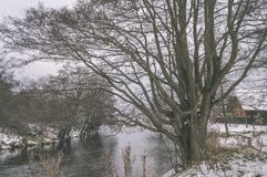 ländliche Szene des Winters mit Schnee und weißem Waldweinleseeffekt Lizenzfreie Stockbilder