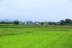 Ländliche Szene im yangshuo Lizenzfreie Stockbilder