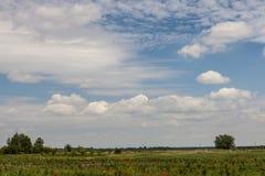 Ländliche Szene mit recht bewölktem Himmel Stockbilder