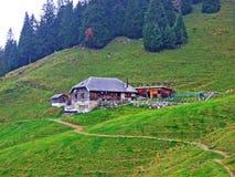 Ländliche traditionelle Architektur und Bauernhöfe mit Viehhaltung in der Obertoggenburg-Region, Stein lizenzfreie stockbilder