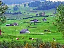 Ländliche traditionelle Architektur und Bauernhöfe mit Viehhaltung in der Obertoggenburg-Region, Stein lizenzfreies stockbild