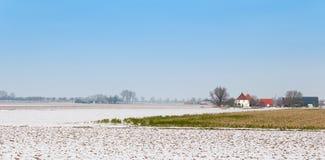 Ländliche Winterlandschaft in den Niederlanden Stockbilder