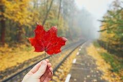 Ländlicher Bahnhof im Herbstnebel Stockbild