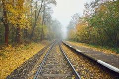 Ländlicher Bahnhof im Nebel Stockfotos