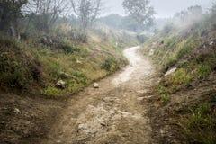 Ländlicher Fußgängerweg an der Dämmerung in der Landschaft an einem nebeligen Tag Stockbilder