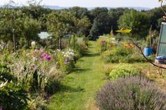 ländlicher Häuschengarten am heißen Sommertag von Juli Lizenzfreie Stockfotos