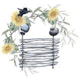 Ländlicher Zaun mit Sonnenblumen Getrennt auf weißem Hintergrund Stockfoto