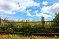 Ländlicher Zaun und Eimer Stockfoto