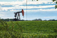 Ländliches Alberta: Öl-Pumpensteckfassung mitten in Kartoffelacker Lizenzfreies Stockbild