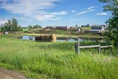 Ländliches Alberta-Bauernhofyard nahe Hasse Lake, steinige Fläche lizenzfreie stockfotografie