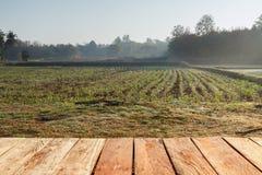 Ländliches Bauernhoffeld mit hölzernem Stockbild