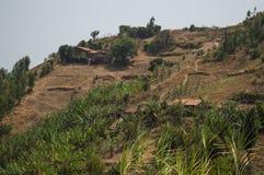 Ländliches Dorf auf einem Hügel, Ruanda Stockbilder