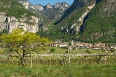Ländliches Dorf von Nord-Italien mit der Landschaft im Frühjahr Stockfoto