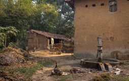 Ländliches indisches Dorf mit Schlammhäusern und -vieh im Hof Lizenzfreie Stockfotografie