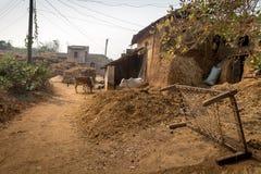 Ländliches indisches Dorf mit Vieh und Schlammhäusern Stockfotografie
