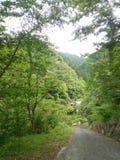 Ländliches Japan Stockbilder