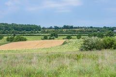 Ländliches Land-York County Pennsylvania Ackerland, an einem Sommer-Tag Lizenzfreies Stockfoto