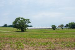 Ländliches Land-York County Pennsylvania Ackerland, an einem Sommer-Tag Stockbild