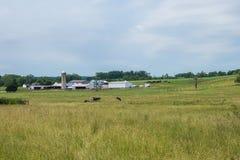 Ländliches Land-York County Pennsylvania Ackerland, an einem Sommer-Tag Stockfotografie