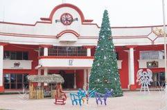 Ländliches Mexiko-Weihnachten lizenzfreies stockfoto