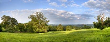 Ländliches Panorama Gloucestershire Lizenzfreie Stockfotografie