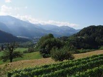 Ländliches Panorama mit Alpen an Europäer Gruyeres-Stadt in der Schweiz im August lizenzfreie stockfotografie