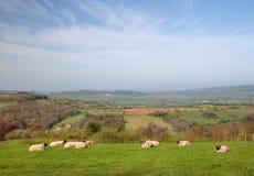 Ländliches Wales Lizenzfreie Stockfotos