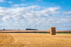 Ländliches Wiltshire Lizenzfreie Stockfotografie