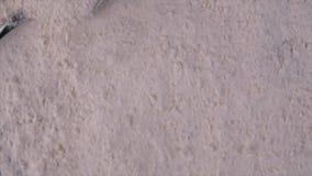 Längd i fot räknat av torkad jäst för stänkpulver stock video