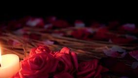 Längd i fot räknatflyttning av rosa kronblad, stearinljusbränningen och blommarosen vektor för valentin för pardagillustration äl