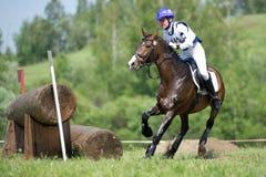 Längdlöpning Bärande häst med ett plötsligt stopp Royaltyfria Foton