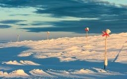 Längdlöpningslinga i nordliga Sverige i vinter Arkivbild