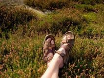 Länge tröttade nakna ben, i att fotvandra sandaler på maximum Att fotvandra i sandsten vaggar, det bergiga landskapet Arkivfoton