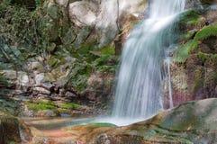 längs bergströmvattenfallet Royaltyfri Bild