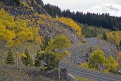 längs den asp- beartoothhuvudvägen Arkivfoto