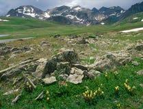 Längs den Colorado slingan San Juan Range, sydvästliga Colorado Arkivbilder