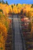 längs för brittiska columbia för höst trees väg Arkivbild
