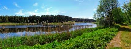 längs lakevägen Royaltyfria Bilder