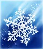 längs snowflaken Royaltyfria Foton