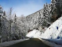 Längs vägen i de snöig bergen Royaltyfri Bild
