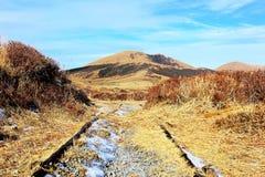 Längs vägen till Mount Aso Arkivfoton
