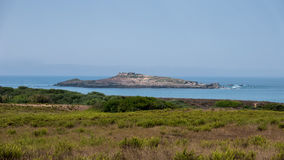 längs väghavet Arkivfoto