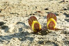 Längsgående stödbjälke på en strand i en sommarutflykt Arkivfoto