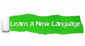 Lär en ny språktext, inspiration, motivation och affärsidé på grönt sönderrivet papper royaltyfria foton