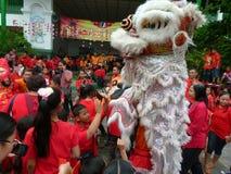 Lära kinesisk kultur arkivfoto
