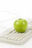 lära online Fotografering för Bildbyråer