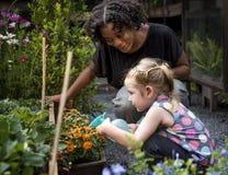 Lärare- och liten flickaskola som lär att arbeta i trädgården för ekologi Arkivbilder