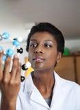 LärareLooking At Molecular struktur i vetenskap Fotografering för Bildbyråer