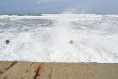 Lärmende Wellen, blaues Meer Stockfotos